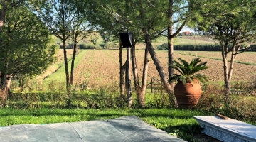 property in Magliano in Toscana