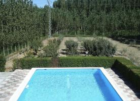 Swimming pool & fruit tree garden