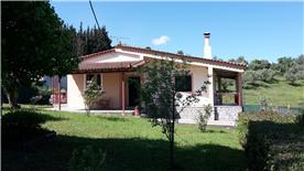 property in Amaliada