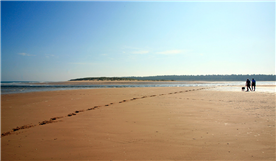 Holkham beach voted one of the ten best beaches in the UK