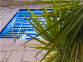 Beautiful plants pool side, Balmoral Villa.