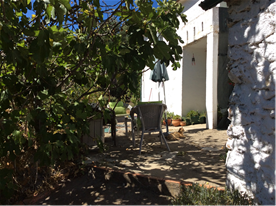 Patio area under the shade of the fig trees.