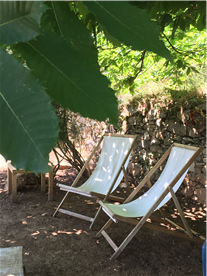 Shady places to relax