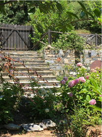 Steps from road area