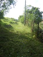 property in Tyzha