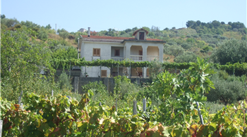 property in Orsomarso
