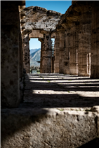 Paestum, greek temples in the Cilento