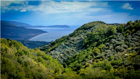 View to Palinuro from between Celso and San Giovanni, Cilento