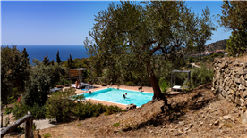 View of the pool in summer at Capalia
