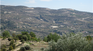 property in Laneia