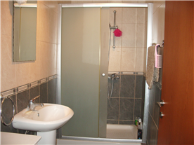 Apartment Shower Room