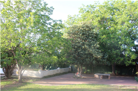 Back garden with designated area with various fruit trees