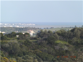 View from housesite