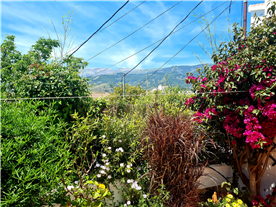 Mountain view from the garden