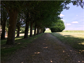 Private driveway to detached gite