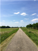 Small Country road to the property