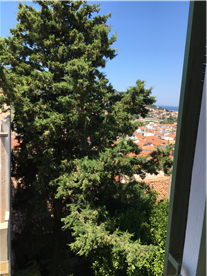 View from Small Bedroom.