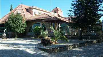 property in Skarinou