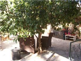 Flat 1 courtyard