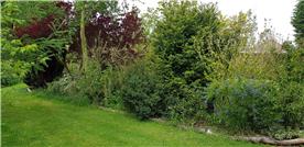 1 of the secret gardens