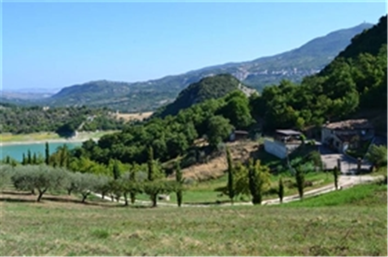 View from the olive grove of the house and Lake Bomba