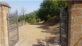back gates