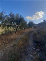 property in Agios Ioannis Theologos