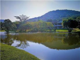 Main Lake in the Resort
