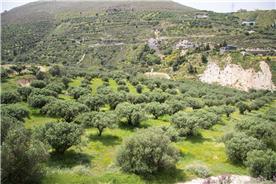 Plot of land near Heraklion