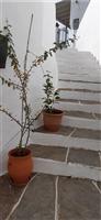 property in Apollonia