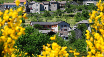 property in Altier
