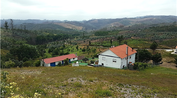 property in Graça