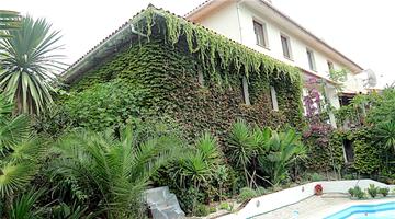 property in Tábua
