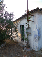 property in Quinta