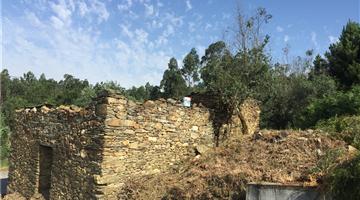 property in Mortágua