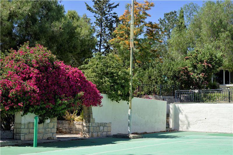 Tennis court  in summer