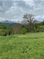 property in Georgi Damyanovo
