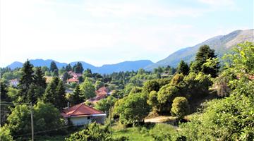 property in Gianniotion, Skoulikaria
