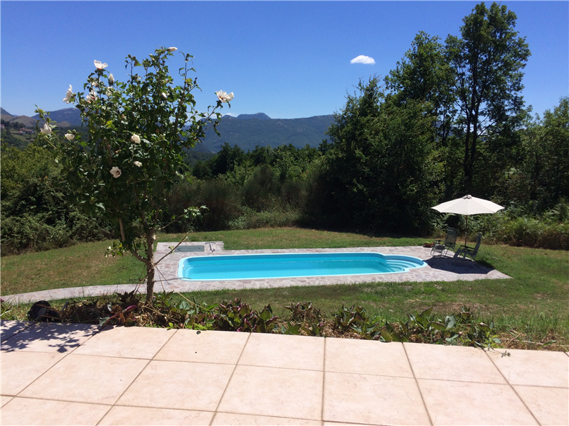 The view of the pool from the house
