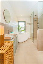 large bath and shower of the master bedroom 3