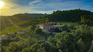 property in Castelo de Paiva