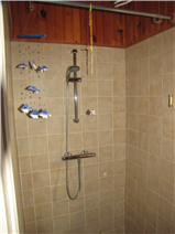 Shower room (with WC)