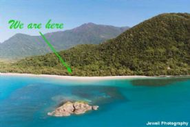 property in Daintree