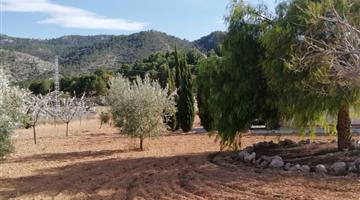 property in Hondón de las Nieves