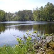 Lake near the house