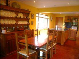 Open plan dining room and kitchen