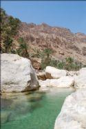 Local Wadi
