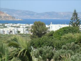 property in Naxos - Agkidia