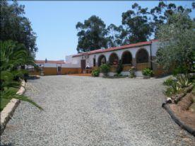 property in Niebla
