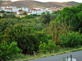 road in front of house , town in distance